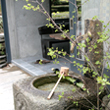 ガーデンレイアウト 写真