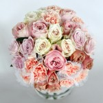 3. Facsination Roses_2